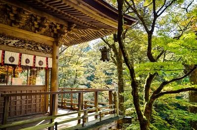 Zelf Tuin Aanleggen : Zelf een japanse tuin aanleggen japanse tuinen